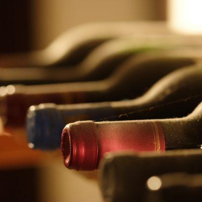 På rätt spår med vinprovning
